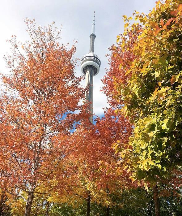 Fall CN Tower